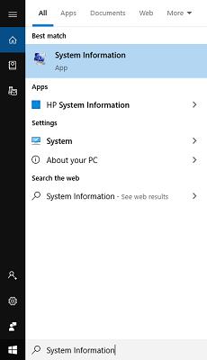 Find 'System Information'